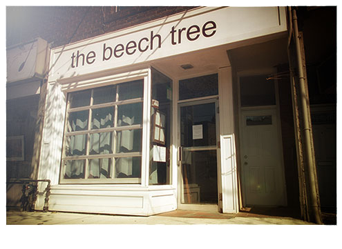 Front-of-the-beech-tree-2