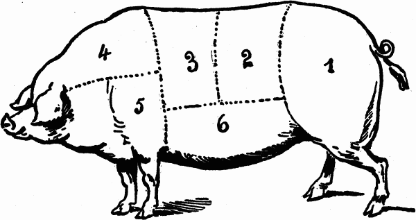 cuts-of-meat-pork